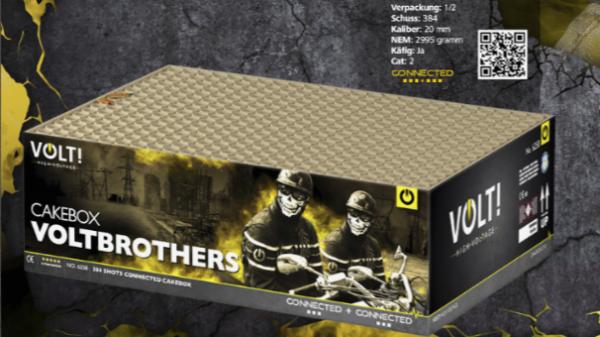 Voltbrothers von Volt
